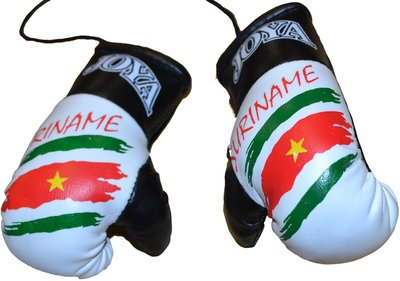 Joya Carhanger Mini Gloves Suriname Joya Fightgear