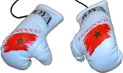 Joya Carhanger Mini Gloves Marocco Joya Fight Gear