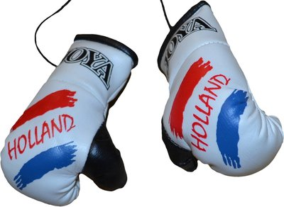 Joya Carhanger Mini Gloves Nederland Joya Fight Gear