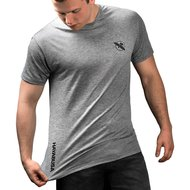 Hayabusa Performance Dry Fit T-shirt Grijs
